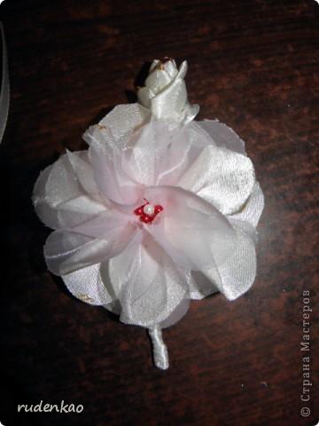 Свадебка фото 1