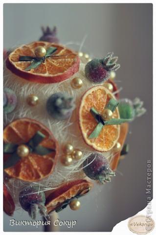 """Плодовые деревья """"Яблоко,апельсин""""!!! фото 2"""