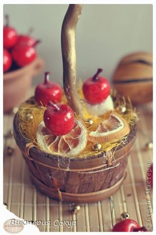 """Плодовые деревья """"Яблоко,апельсин""""!!! фото 6"""