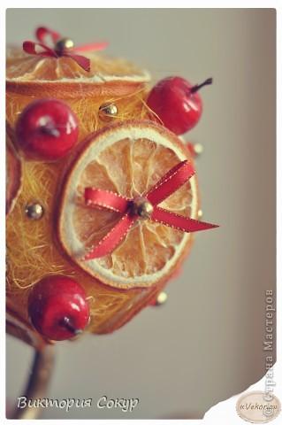"""Плодовые деревья """"Яблоко,апельсин""""!!! фото 5"""