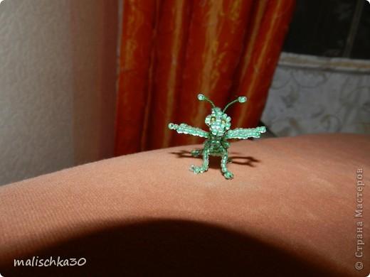 дракоша вот такой он маленький  фото 4