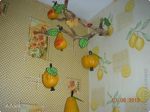 груши- прошлогодние высушенные декоративные тыковки,покрашенные гуашью+ пва