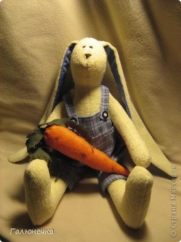 А у нас с теплом и зайчиков прибавляется все больше и больше)Махровые,флисовые....пухленькие и худенькие...но все косоглазенькие и длинноухие)  Солнечная махровенькая девчушка! фото 2