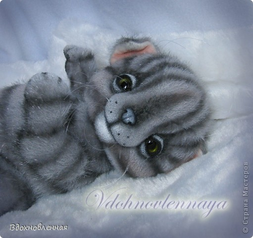 Родились такие лапусики пузатенькие)) фото 11