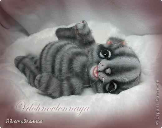 Родились такие лапусики пузатенькие)) фото 4