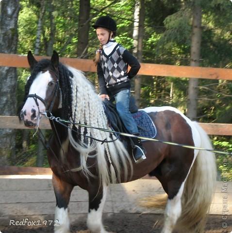 """Когда делала панно для подруги http://stranamasterov.ru/node/371841 уже знала, что сделаю для своей дочери. Она """"болеет"""" лошадьми, и идея пришла сама собой))) фото 5"""