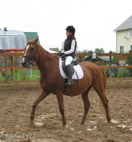 """Когда делала панно для подруги http://stranamasterov.ru/node/371841 уже знала, что сделаю для своей дочери. Она """"болеет"""" лошадьми, и идея пришла сама собой))) фото 6"""