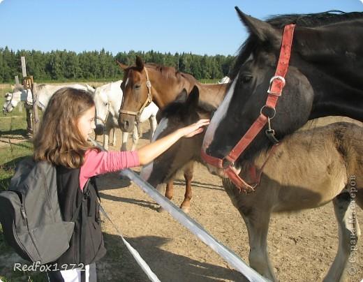 """Когда делала панно для подруги http://stranamasterov.ru/node/371841 уже знала, что сделаю для своей дочери. Она """"болеет"""" лошадьми, и идея пришла сама собой))) фото 9"""