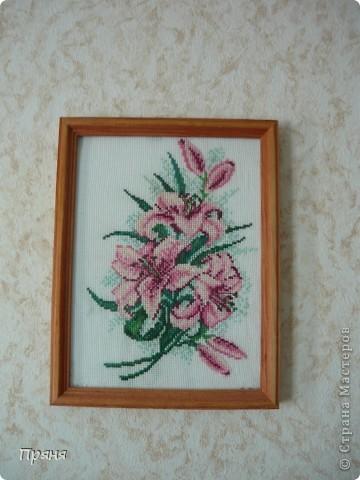 Розовые лилии фото 1