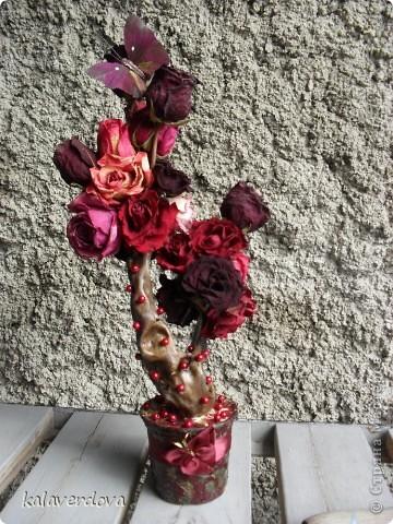 Розы насушила и пофантазировала с ними. фото 1