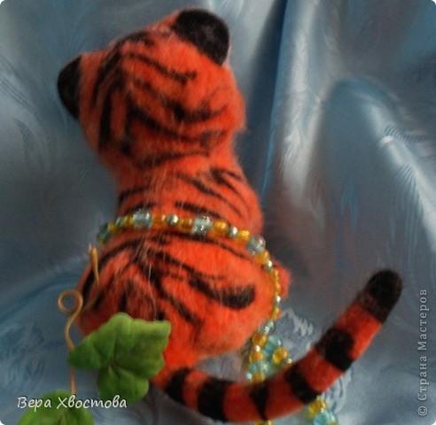 Тигрюша Буська фото 3