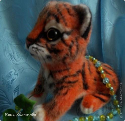 Тигрюша Буська фото 4