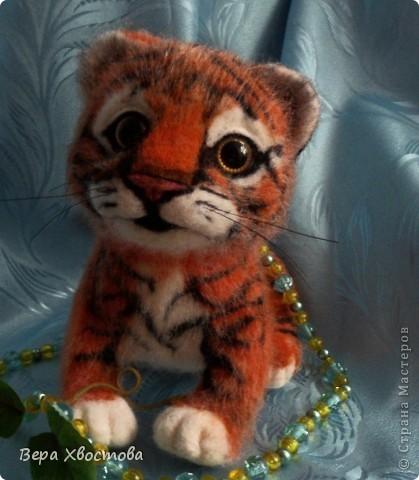Тигрюша Буська фото 1