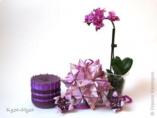 Всем привет! Представляю Вашему вниманию наборы. Спасибо всем, кто принял участие в их создании!  Цветут цветы для красоты,  Для мыслей, чистых и прекрасных,  Для вечной, праведной любви  И для сердец, красивых, ясных.  Цветов прекрасный аромат  Нам поднимает настроенье,  А красота излечит нас  От скуки томной и безделья.  Цветы, как искорки костра,  Всегда согреют наши души.  Природа нам цветы дала,  Чтоб жизни наши стали лучше.  Голосуем за три понравившихся набора! фото 8