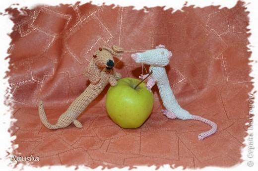 Вот такие смешные браслетики я связала по описанию в Интернете: http://uroki-vjazanija.blogspot.com/2011/10/taksa-braslet.html По-моему, крыска и такса подружились! фото 4