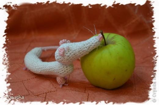 Вот такие смешные браслетики я связала по описанию в Интернете: http://uroki-vjazanija.blogspot.com/2011/10/taksa-braslet.html По-моему, крыска и такса подружились! фото 5