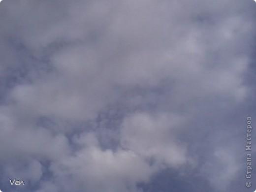 Всем привет!:) У вас уже наступило лето??У нас наконец-то да!! Поделюсь с вами своим летним настроением!:)Итак.. Это расцветает калина. фото 22