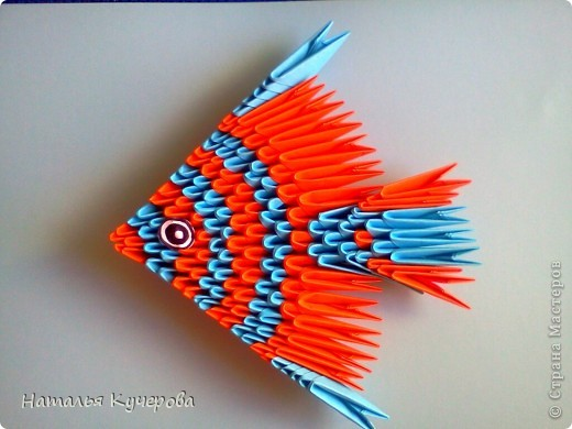 Рыбка фото 1