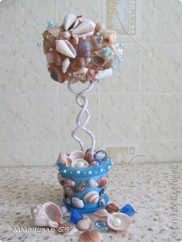 Дорогие мастерицы представляю вам Морской топиарий. Ракушки привезены со Средиземного моря. Сделала на одном дыхании. фото 1