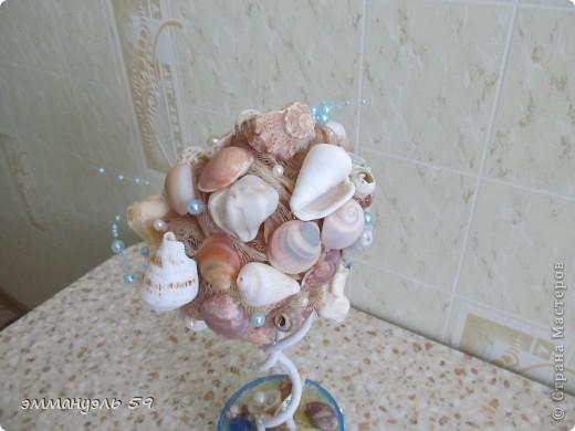 Дорогие мастерицы представляю вам Морской топиарий. Ракушки привезены со Средиземного моря. Сделала на одном дыхании. фото 4