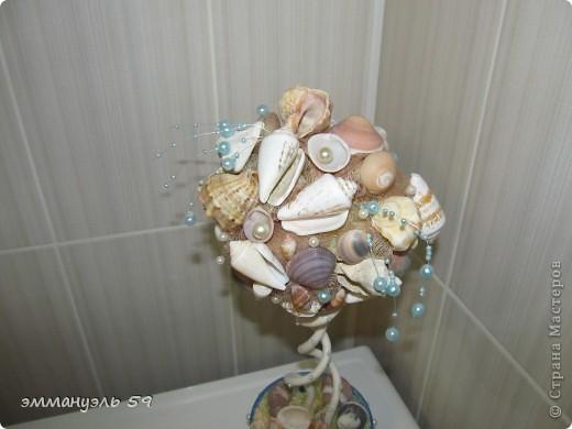 Дорогие мастерицы представляю вам Морской топиарий. Ракушки привезены со Средиземного моря. Сделала на одном дыхании. фото 7