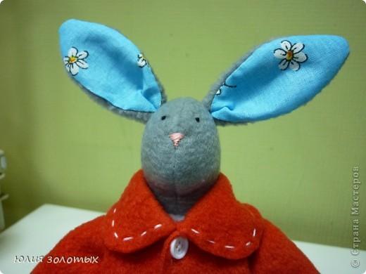 Вислоухие зайцы мальчик и девочка. Вернее заяц- это моему папе, в лапке у него виноград, тзайчиха- маме, она цветы любит. фото 9
