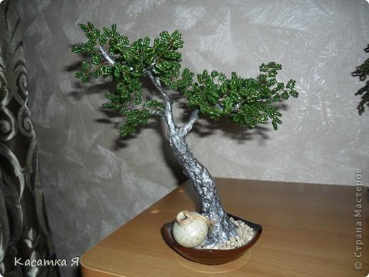 Дерево с кувшинчиком. фото 1