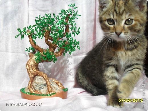 """вот такое корявенькое деревце получилось.для себя решила,что мне больше нравится делать фактурные стволы,чем пышную крону) """"Посадила"""" я это деревце на камень,из-за чего оно стало тяжеленьким. фото 2"""