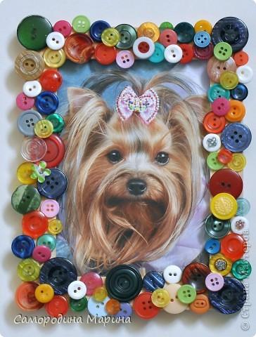 Весёлая рамочка для фото забавной собачки