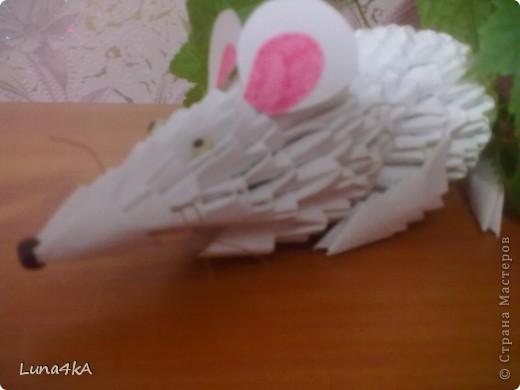 Это моя первая работа в технике модульное оригами.