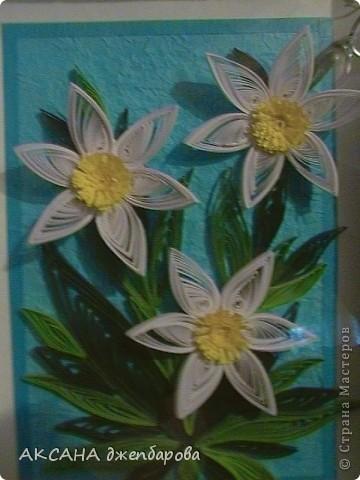 Вот такие герберы у меня получились.я их делала по мк Ольги Ольшак.большое ей спасибо. фото 6