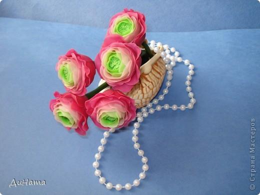 обычные розы фото 4