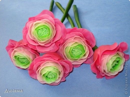 обычные розы фото 3