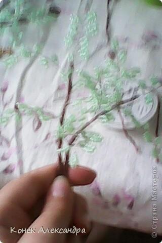 Вот такое денежное дерево! фото 21