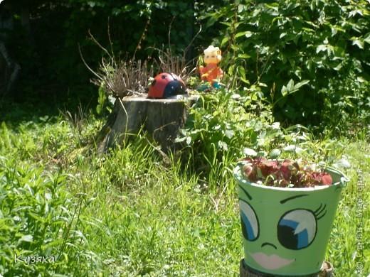 """Клумба""""Лебедь"""", в этом году добавили камыши и лотос из пластиковых ложек(прошлогодние и цветущие у меня в блоге) фото 8"""