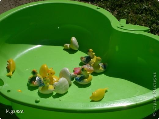 """Клумба""""Лебедь"""", в этом году добавили камыши и лотос из пластиковых ложек(прошлогодние и цветущие у меня в блоге) фото 9"""
