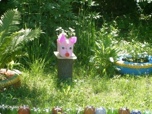 """Клумба""""Лебедь"""", в этом году добавили камыши и лотос из пластиковых ложек(прошлогодние и цветущие у меня в блоге) фото 13"""