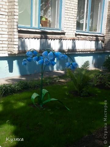 """Клумба""""Лебедь"""", в этом году добавили камыши и лотос из пластиковых ложек(прошлогодние и цветущие у меня в блоге) фото 19"""