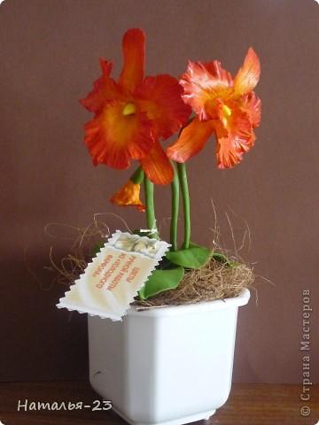 Добрый день, Мастерицы! Вот такая орхидейка у меня слепилась.  фото 1