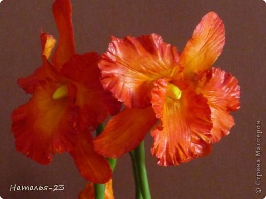 Добрый день, Мастерицы! Вот такая орхидейка у меня слепилась.  фото 2