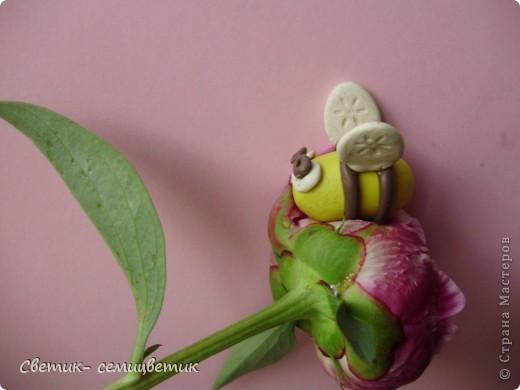 С такой пчелкой справляются даже двухлетки. фото 2