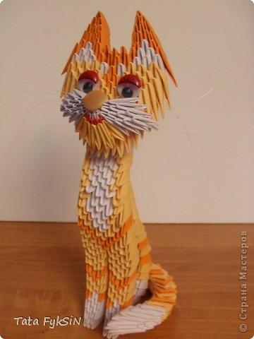 Благодаря  ur_nativ у меня появился котик! фото 1