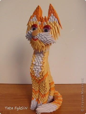 Благодаря  ur_nativ у меня появился котик! фото 3