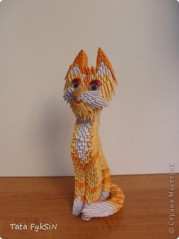 Благодаря  ur_nativ у меня появился котик! фото 5