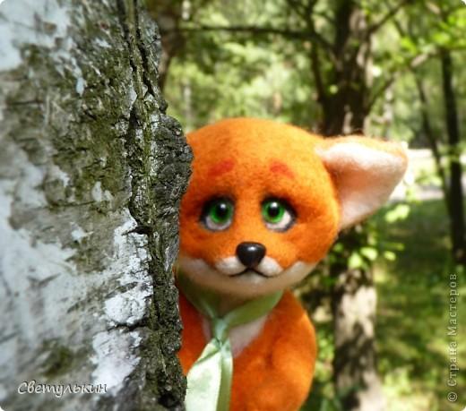 Любопытный лисёнок и другие...) фото 1