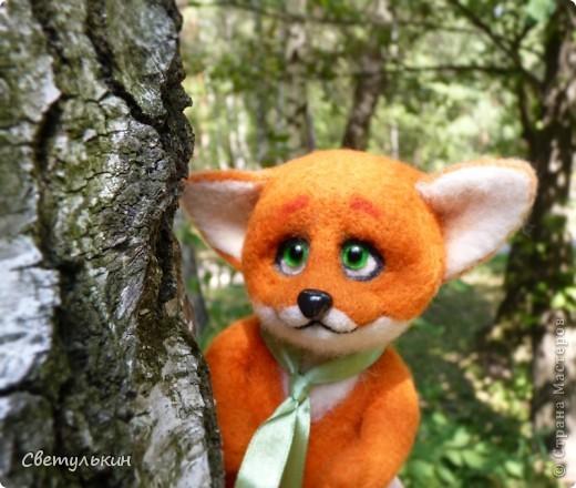 Любопытный лисёнок и другие...) фото 2