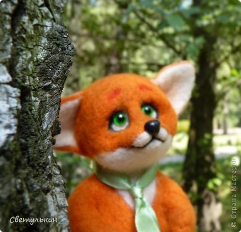 Любопытный лисёнок и другие...) фото 4