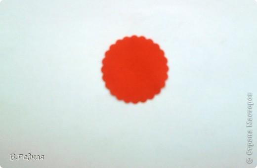 Привет всем жителям СМ. Сегодня лазя интернетом я наткнулась на занимательную запись в блоге. Эта запись вмещала в себе 400 МК по изготовлению цветов.  Насмотревшись я тоже решила создать свой МК.    фото 10