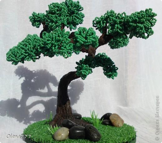 Доброго дня и ночи, жители Страны Мастеров! Это моё третье дерево. Теперь и у меня есть бонсай! Ну, о работе судить вам. Буду благодарна за любые комментарии. Высота дерева 21см. фото 7