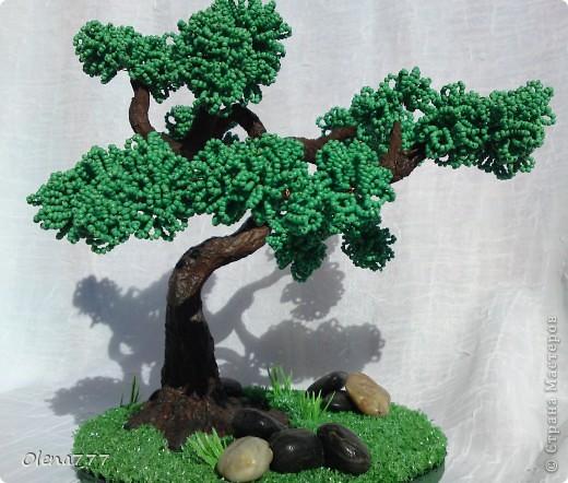 Доброго дня и ночи, жители Страны Мастеров! Это моё третье дерево. Теперь и у меня есть бонсай! Ну, о работе судить вам. Буду благодарна за любые комментарии. Высота дерева 21см. фото 1